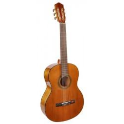 Guitarra Clásica SALVADOR...